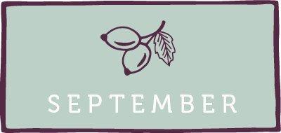 Saisonkalender September Kachel - www.emmikochteinfach.de