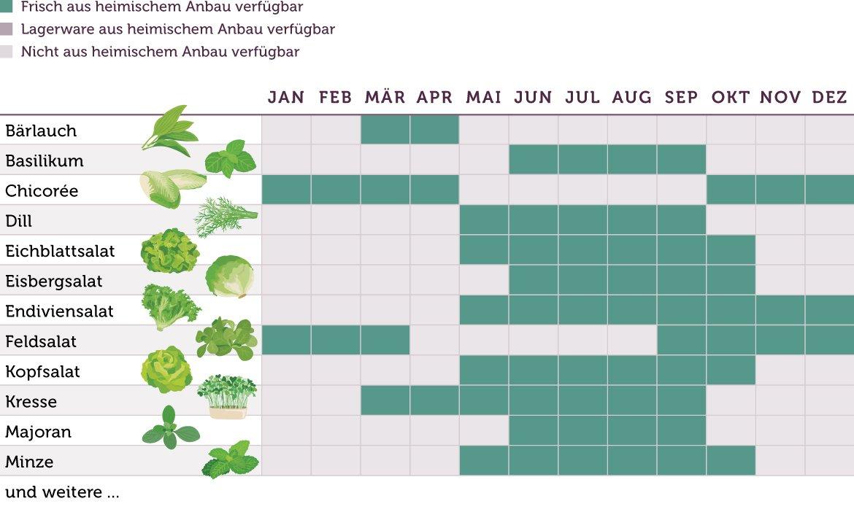 Saisonkalender Salate Kurz - www.emmikochteinfach.de